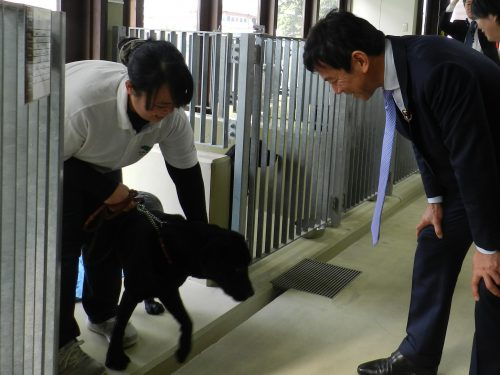 島根あさひ盲導犬センター